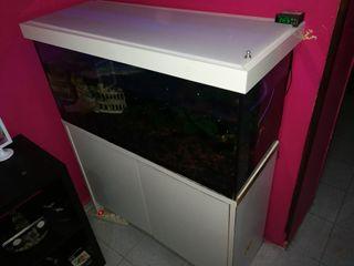 acuario completo 185 litros