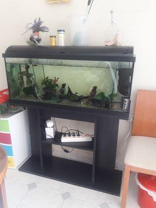 acuario 120l con mueble