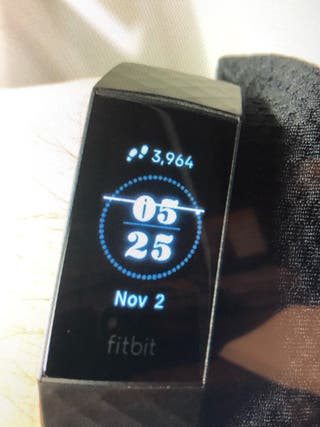 Monitor Fitbit