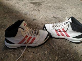 Zapatillas de baloncesto .