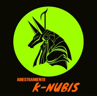 adiestramiento K-Nubis