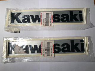 Pareja adhesivos Kawasaki KLX 300R