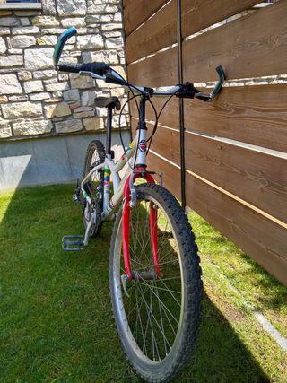 Bicicleta Junior (Orbea)