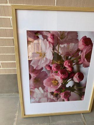 Cuadro de Flores Ikea