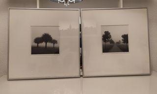 2 Cuadros Ikea + láminas paisaje en blanco y negro