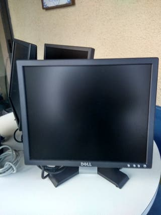 "Monitor PC Dell. 17"". E176FPc. Usado."