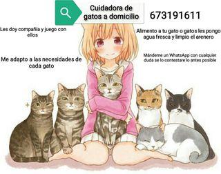 Cuidadora de gatos a domicilio