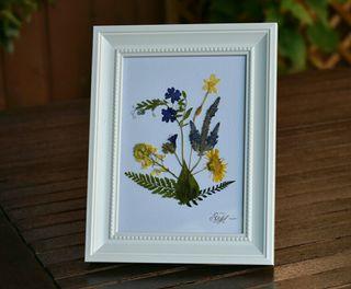 Cuadro de flores secas hecho a mano. Nuevo.