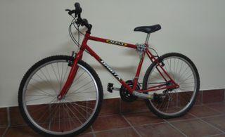 Bicicleta de paseo Orbita Alfa 3
