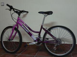 Bicicleta de paseo AGECE
