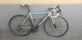Bici Focus Izalco Carbono