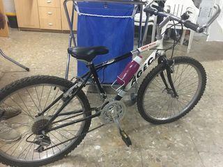 Bicicleta montaña junior + casco