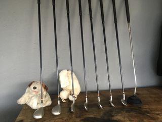 Juego de palos de Golf de taller de Golf de F.M.
