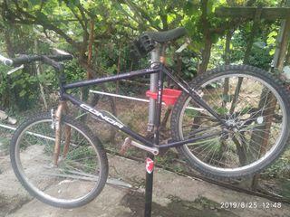 Bicicletas hombre y mujer Vintage