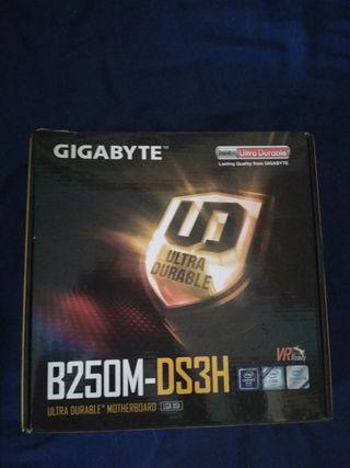 Placa base B250M-DS3H