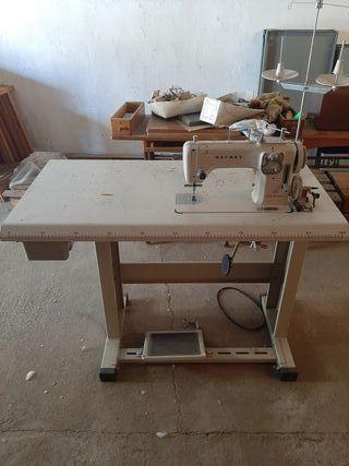 máquina coser REFREY 430 industrial