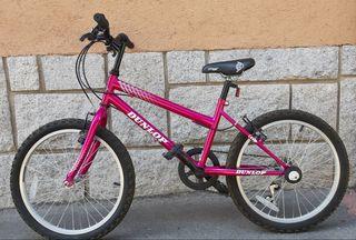Bicicleta Dunlop 20 pulgadas