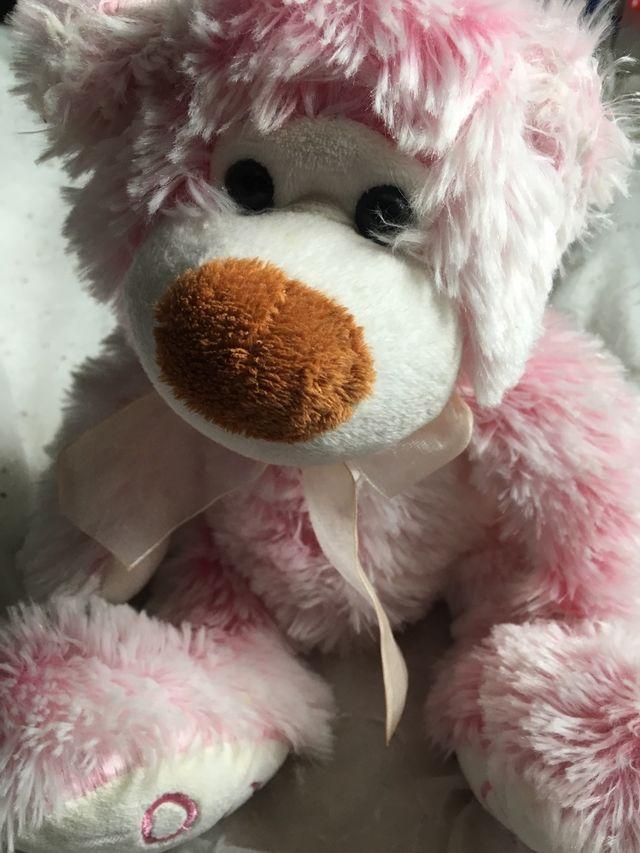 Baby's beautiful teddy bear