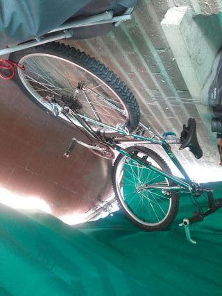 Bicicleta de montaña rx100