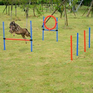 Set de Entrenamiento de Agilidad para Perros con V