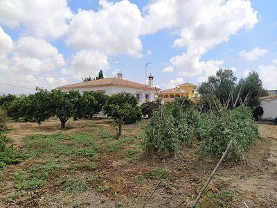 Casa en venta (El Romeral, Málaga)