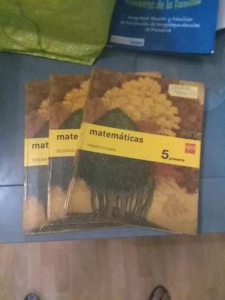 matemáticas SM 5 primaria