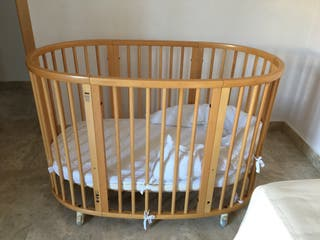Cuna Stokke (Prenatal)