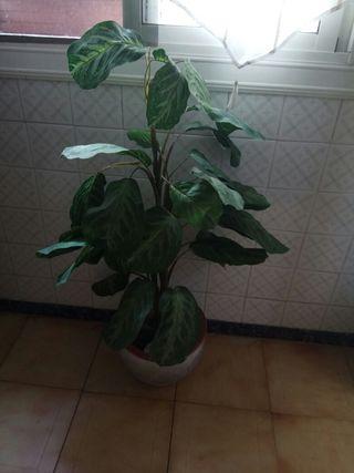 planta de plástico+ maceta