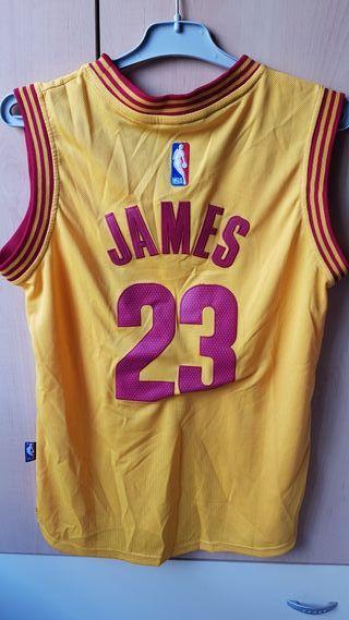 camiseta NBA Lebron James (Cavs)