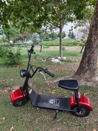 Citycoco Scooter eléctrica