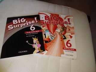 Libro de ingles Big Surprise