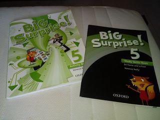 libro de ingles Big sorprise