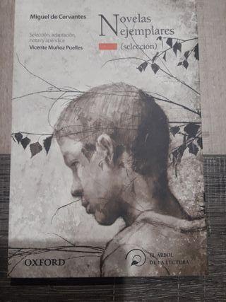 Novelas ejemplares 9788467356496