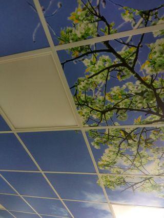 Instalaciones Pladur y techos AcustiK
