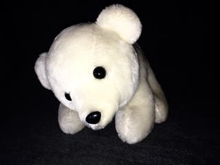 Cachorro de oso polar en peluche.