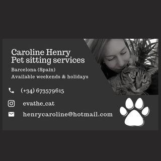 cuidadora animales, petsitter, catsitter