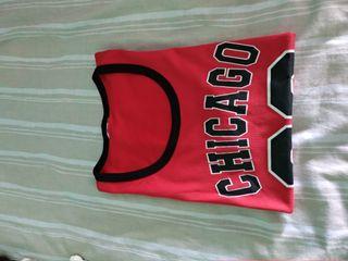 Camiseta Chicago Bulls 23