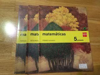 Matemáticas 5° Primaria. COMO NUEVO