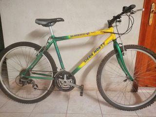 "Bicicleta BTT Siera Monty 26"""