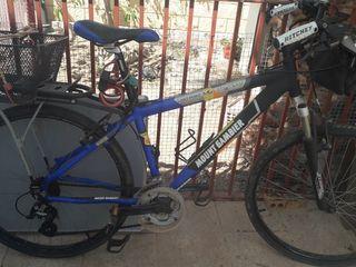bicicleta con cesta extraible