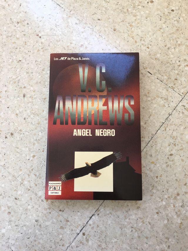 Colección de V.C. Andrews