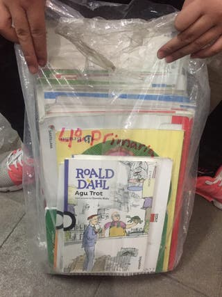 Libros de cuarto primaria de Santillana