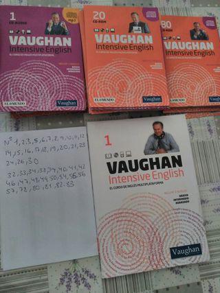 inglés intensivo Vaughan