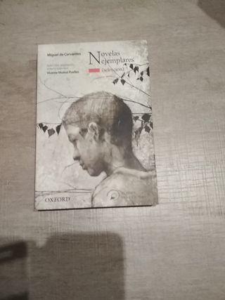 Lectura Novelas ejemplares Oxford