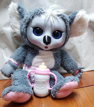 Koala Animals Babies