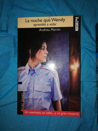 La noche que Wendy aprendió a volar
