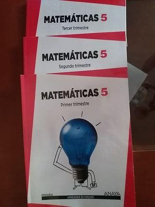 Libros de matemáticas, 5° primaria