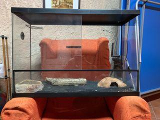Terrario para reptiles y anfibios.