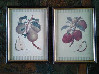 Dos cuadros de frutas