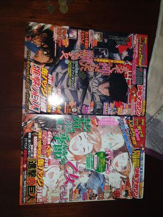 Revistas manga Bessatsu shonen magazine